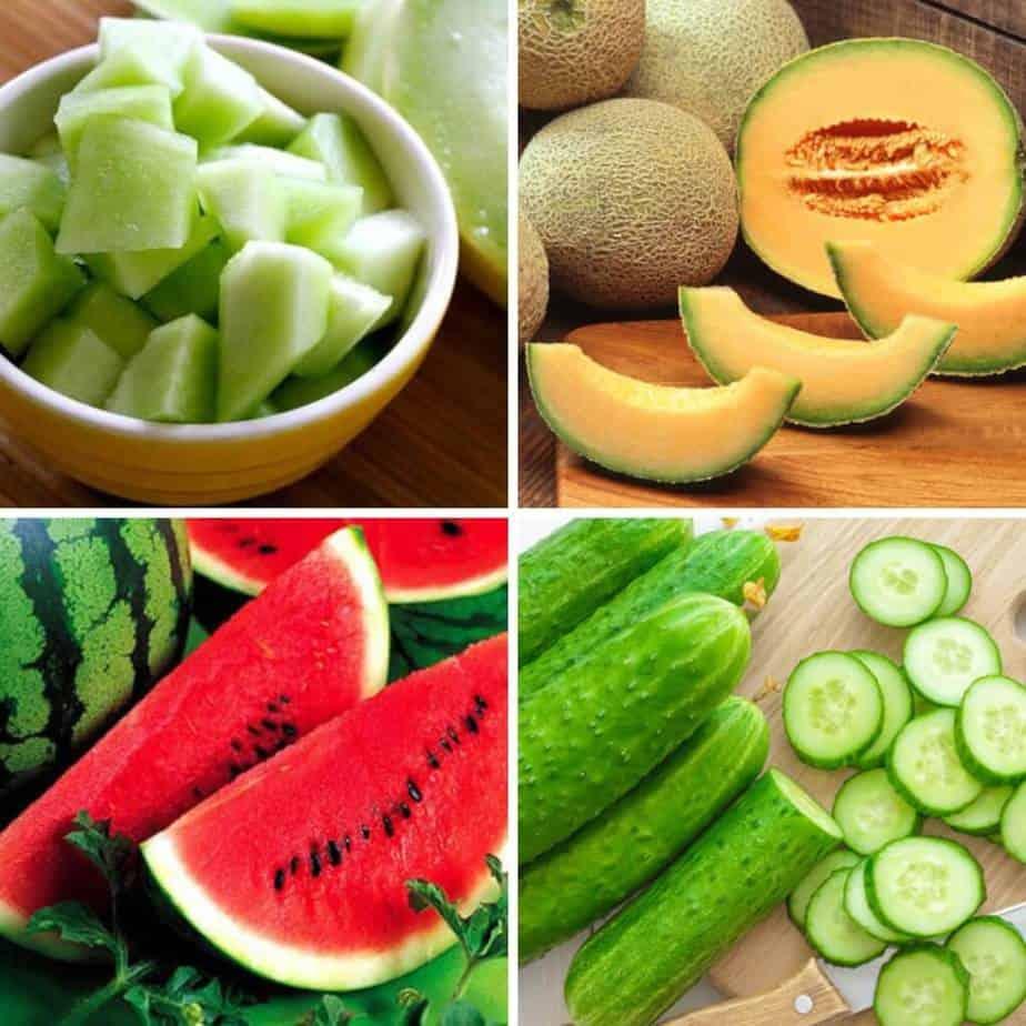 Trái cây ngăn mất nước mùa hè bạn nên ăn hàng ngày - Dinh dưỡng