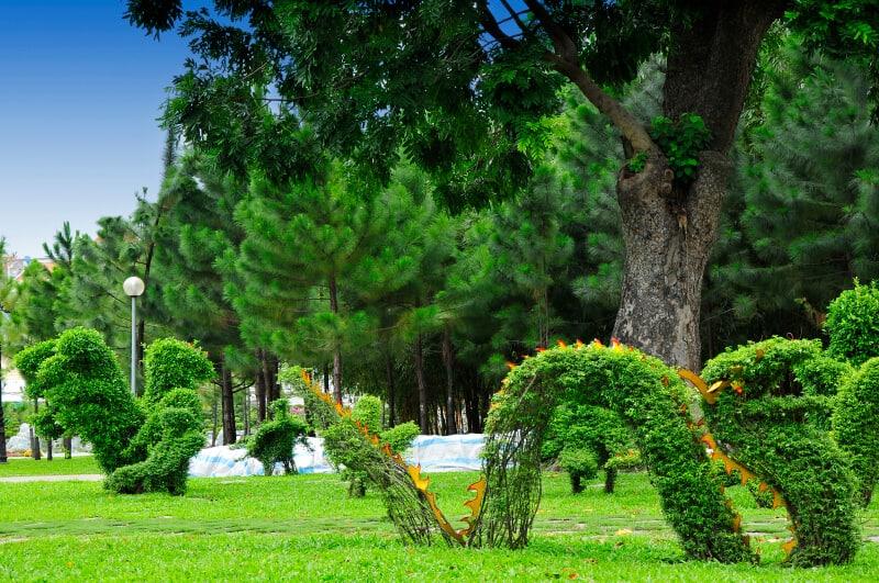 Top 06 Công Viên Trượt Patin Tại Sài Gòn - - Công viên 23/9 | Công viên Chi Lăng | Công viên Gia Định 19