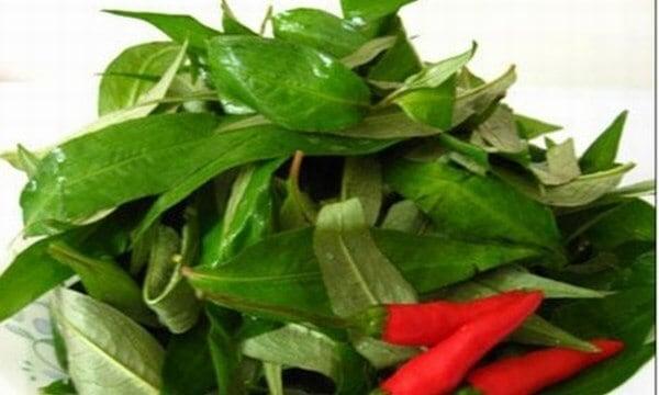 Top 6 Loại Rau Các Bà Mẹ Không Nên Ăn Khi Mang Thai 3