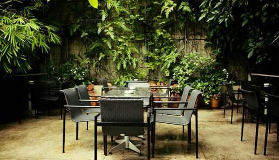 Top 07 Quán Cà Phê Nhiều Cây Xanh Tại Hồ Chí Minh -  - Cafe bản Sonate | Café Terrace | Fly Cupcake Garden 45