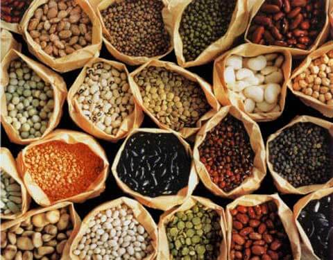 Top 6 Loại Thực Phẩm Ăn Hàng Ngày Rất Có Lợi Cho Sức Khỏe -  - Các loại đậu | Hải Sản | Hạt Hạnh Nhân 13