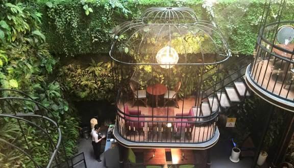 Top 07 Quán Cà Phê Nhiều Cây Xanh Tại Hồ Chí Minh -  - Cafe bản Sonate | Café Terrace | Fly Cupcake Garden 55