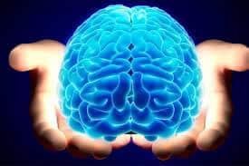 Top 5 Loại Thuốc Bổ Não Tốt Nhất Trên Thị Trường Hiện Nay 642