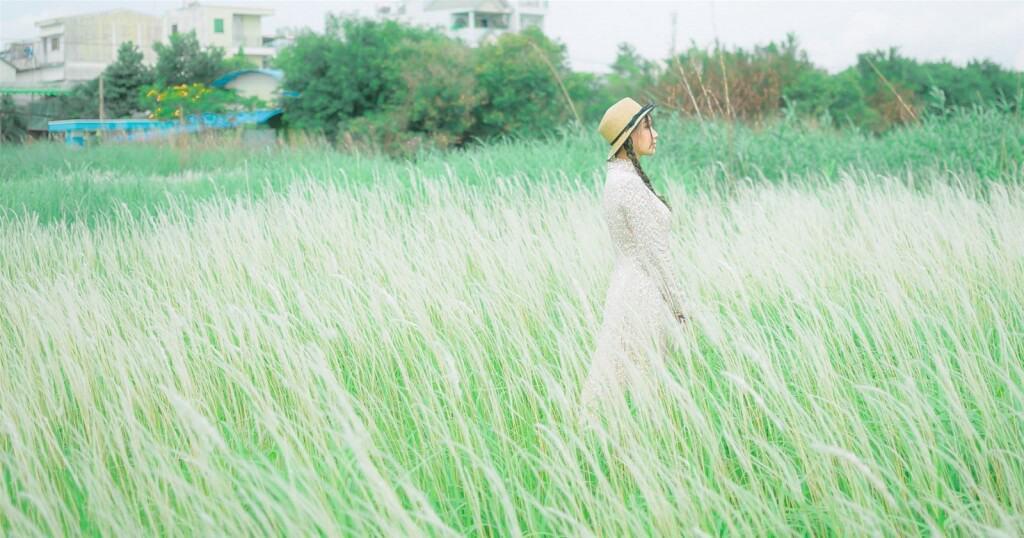 Top 6 Điểm Chụp Ảnh Cực Chất Cho Tín Đồ Nghiện Sống Ảo Tại Thành Phố Hồ Chí Minh -  - Cánh đồng cỏ lau | Cầu Mống | Đường sách Nguyễn Văn Bình 91