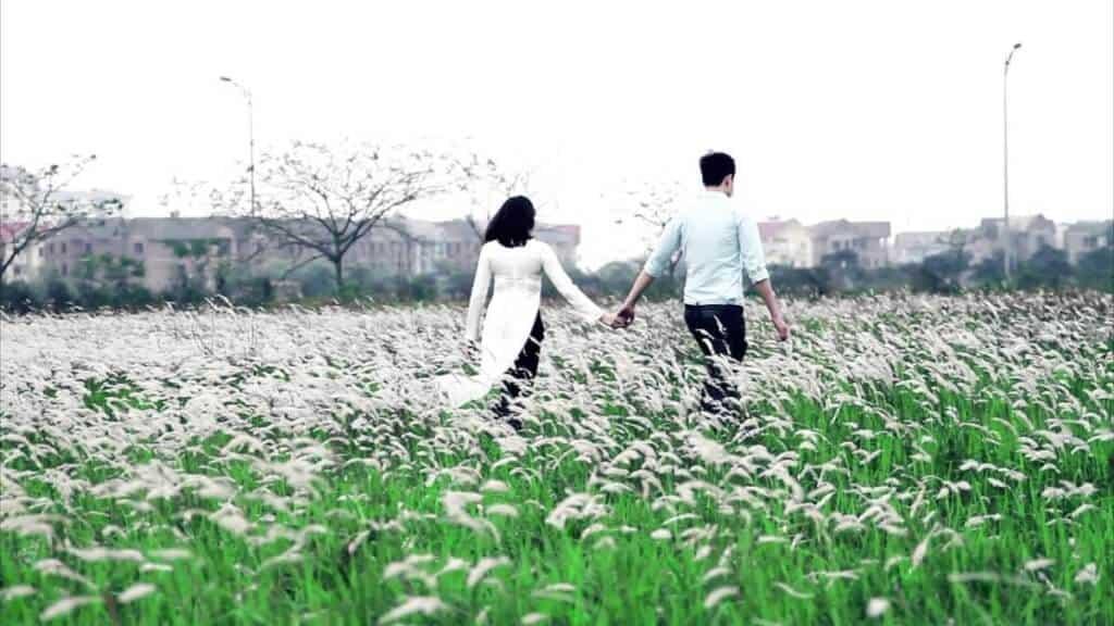 Top 6 Điểm Chụp Ảnh Cực Chất Cho Tín Đồ Nghiện Sống Ảo Tại Thành Phố Hồ Chí Minh -  - Cánh đồng cỏ lau | Cầu Mống | Đường sách Nguyễn Văn Bình 93