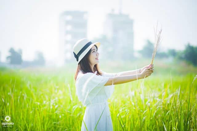 Top 6 Điểm Chụp Ảnh Cực Chất Cho Tín Đồ Nghiện Sống Ảo Tại Thành Phố Hồ Chí Minh -  - Cánh đồng cỏ lau | Cầu Mống | Đường sách Nguyễn Văn Bình 95