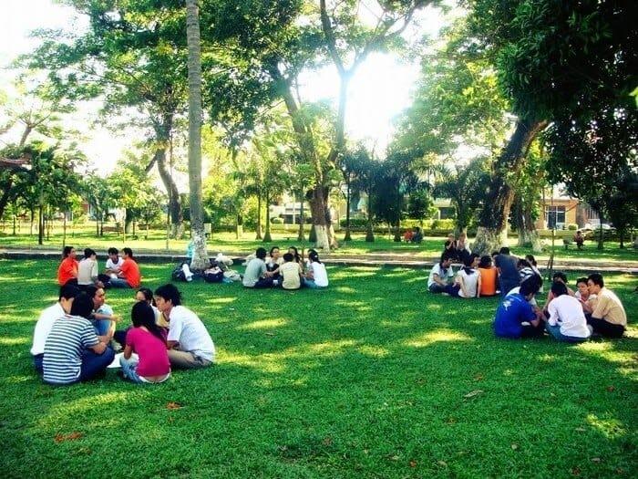 Top 4 Công Viên Là Lá Phổi Xanh Giữa Thành Phố Hồ Chí Minh -  - Công viên Hoàng Văn Thụ 15