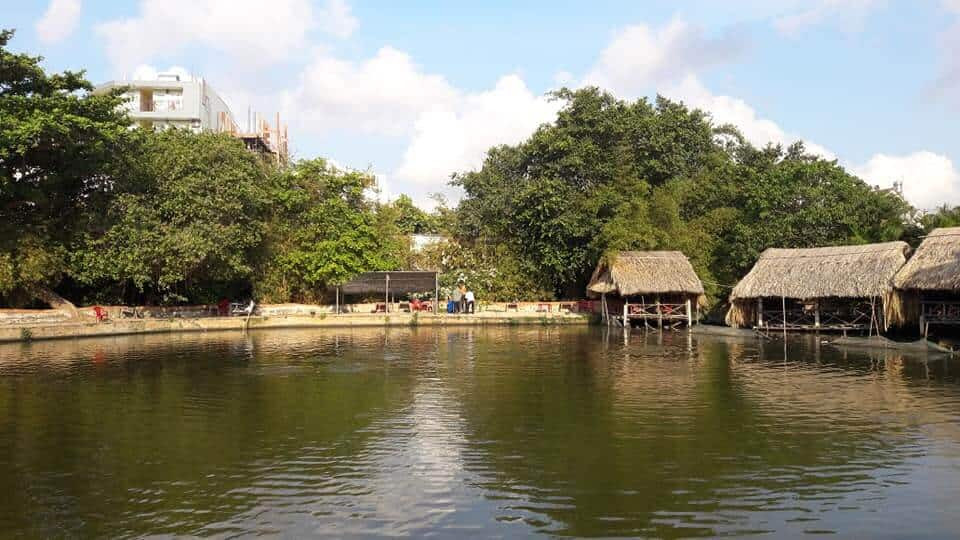 Top 5 Địa Điểm Câu Cá Thư Giãn Nổi Tiếng Được Nhiều Người Tìm Đến Tại Thành Phố Hồ Chí Minh -  - Hồ câu cá Gia Bảo | Hồ câu cá giải trí Vườn Dừa | Hồ câu cá Ngọc Linh 41