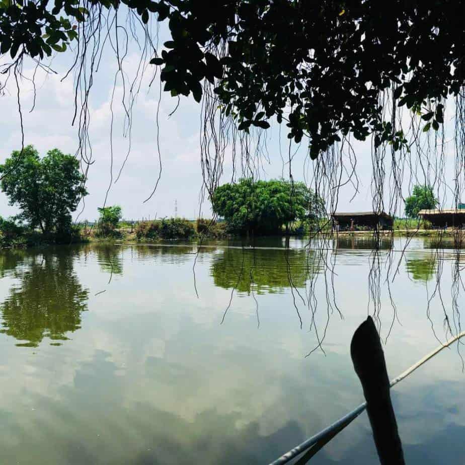 Top 5 Địa Điểm Câu Cá Thư Giãn Nổi Tiếng Được Nhiều Người Tìm Đến Tại Thành Phố Hồ Chí Minh -  - Hồ câu cá Gia Bảo | Hồ câu cá giải trí Vườn Dừa | Hồ câu cá Ngọc Linh 27