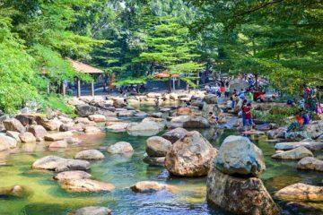 Đổi Gió Với Top 9 Địa Điểm Picnic Cuối Tuần Gần Sài Gòn 831
