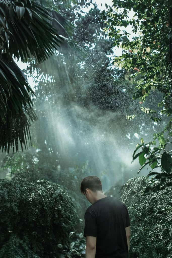 Top 6 Điểm Chụp Ảnh Cực Chất Cho Tín Đồ Nghiện Sống Ảo Tại Thành Phố Hồ Chí Minh -  - Cánh đồng cỏ lau | Cầu Mống | Đường sách Nguyễn Văn Bình 81