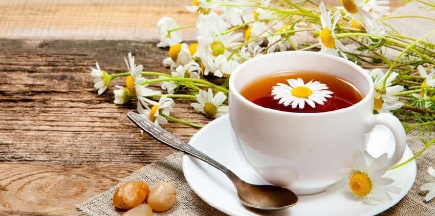 Top 7 Đồ Uống Trị Cảm Cúm Dễ Làm Cho Cả Nhà -  - Nước hành tây mật ong | Nước nén | Trà chanh bạc hà 21