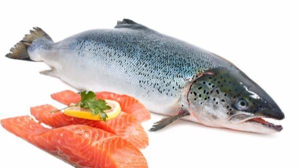 Giá Trị Dinh Dưỡng Và Những Công Thức Chế Biến Món Ngon Từ Cá Hồi - Trong Bữa Ăn Thuần Việt -  - Cá hồi | Món Ngon Thuần Việt 11