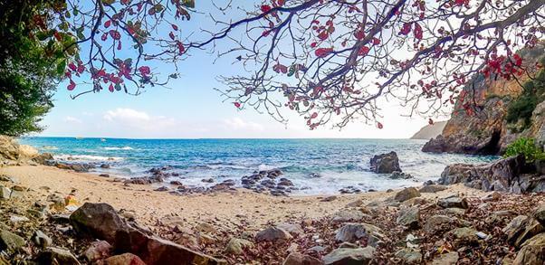 Top 7 Địa Điểm Du Lịch Lý Tưởng Nhất Cho Dân Bơi Tại Đà Nẵng -  - Bãi biển Bắc Mỹ An | Bãi biển Mỹ Khê | Công Viên Suối Khoáng Nóng Núi Thần Tài 33
