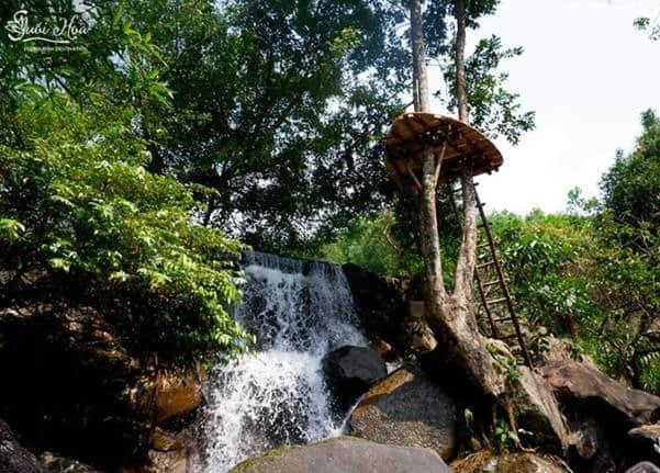 - Top 5 Khu Du Lịch Sinh Thái Dành Riêng Cho Dân Bơi Tại Đà Nẵng