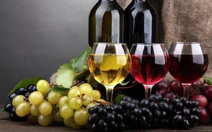 Giá Trị Dinh Dưỡng Và Những Công Thức Chế Biến Món Ngon Lên Men Bổ Dưỡng Cho Sức Khỏe -  - Rượu Vang | Sữa chua 21
