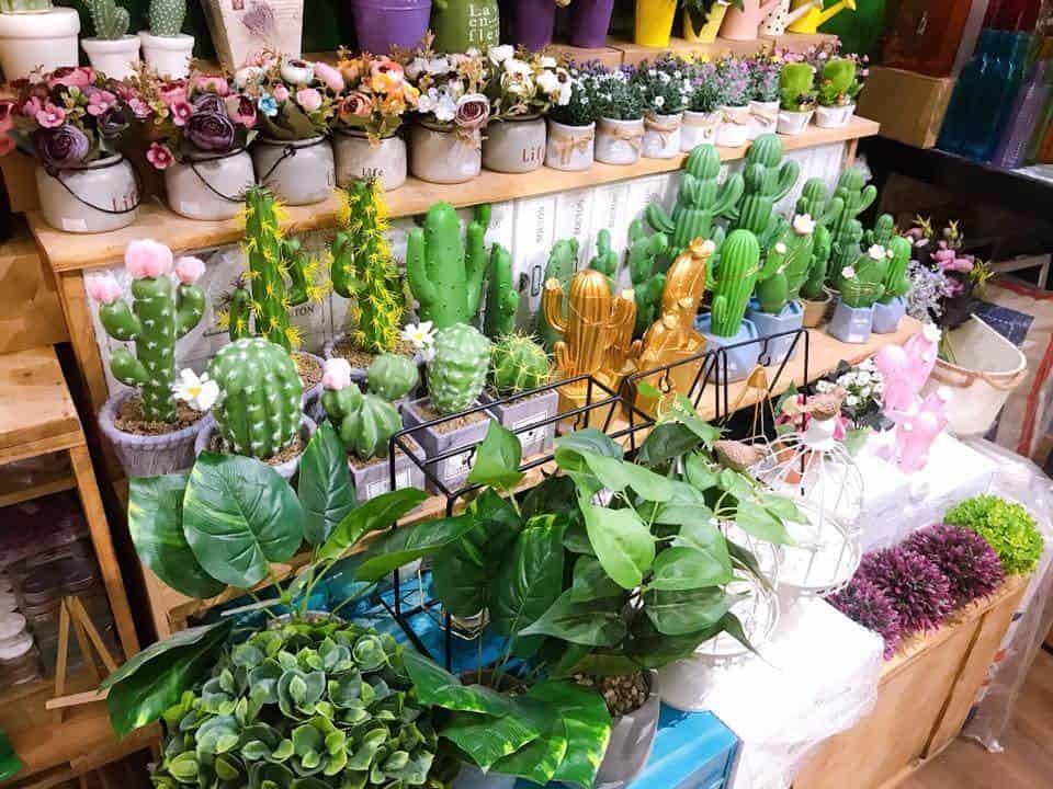 Top 5 Cửa Hàng Cung Cấp Hoa Khô Giá Rẻ Tại TP. HCM -  - Shop Hoa khô Bách Hợp | Shop Hoa khô Iris | Shop Hoa khô Quang Minh 37