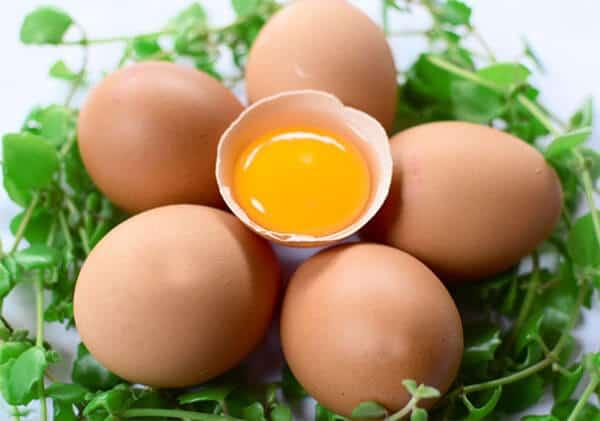 trứng gà thực phẩm giúp phát triển chiều cao trẻ em như thế nào