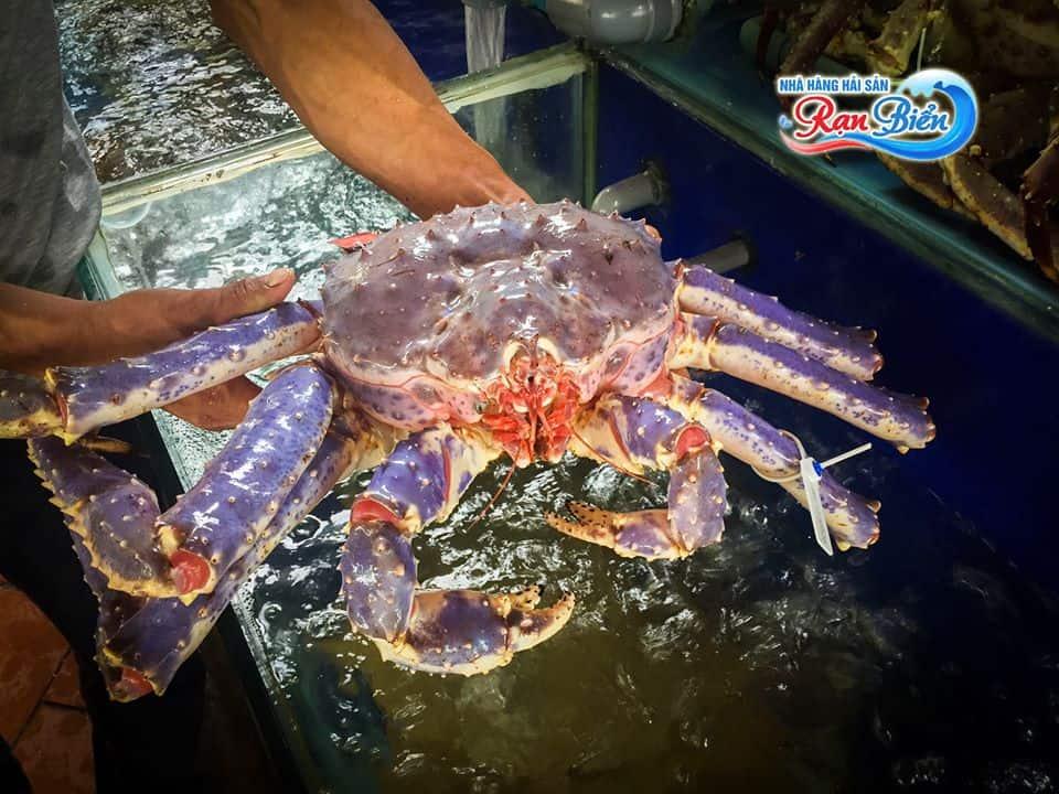 Top 5 Nhà hàng Hải Sản Ngon Không Nên Bỏ Lỡ tại TP HCM - nhà hàng hải sản ngon ở tphcm - Marina Sài Gòn | Nhà hàng Hải Sản cao cấp Yo's | Nhà hàng Rạn Biển 49