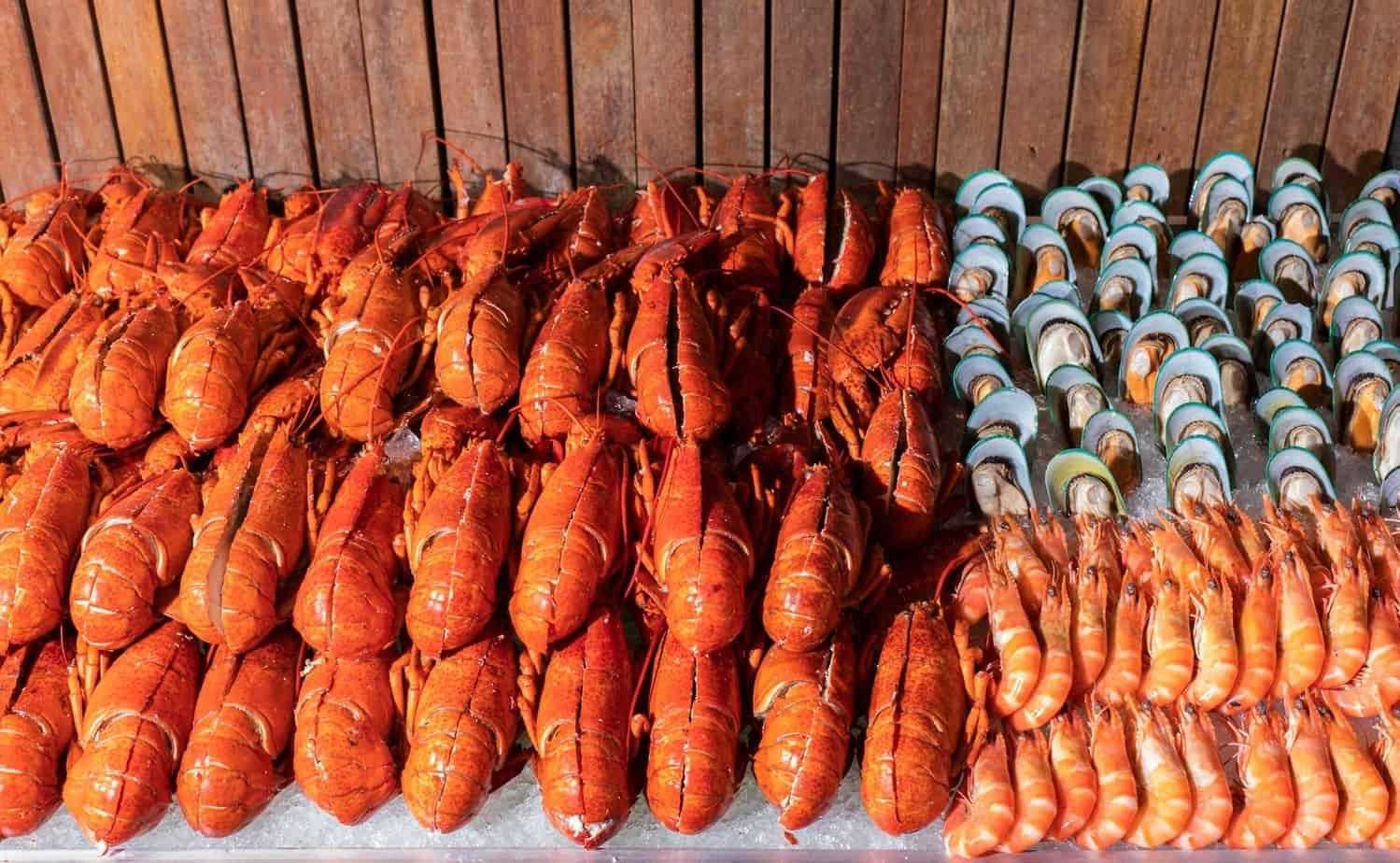 Top 8 Nhà Hàng Buffet Cao Cấp Tại TPHCM Mà Dân Sành Ăn Không Nên Bỏ Lỡ - nhà hàng buffet cao câp tại tphcm - Caravelle Saigon hotel | Hoàng Yến Premier | Nhà Hàng Buffet 72