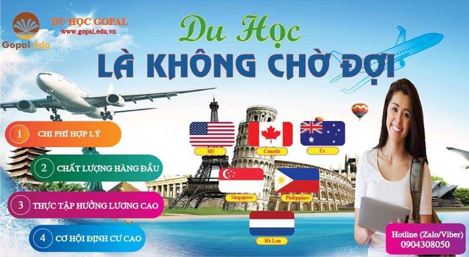 Top 10 Trung Tâm Tư Vấn Du Học Mỹ Uy Tín Tại Hồ Chí Minh -  - Công ty du học TinEdu | Công ty Thế Hệ Mới | Du học Á Châu 23