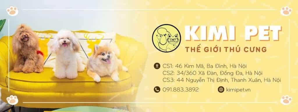 Top 10 Cửa Hàng Thú Cưng Được Lựa Chọn Nhất Hà Nội -  - Hà Nội   Hamster Shop Luna   Ilu Pet Shop 28