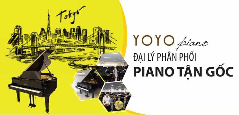 - Top 7 Nơi Bạn Có Thể Mua Đàn Piano Cuộn Với Giá Ưu Đãi