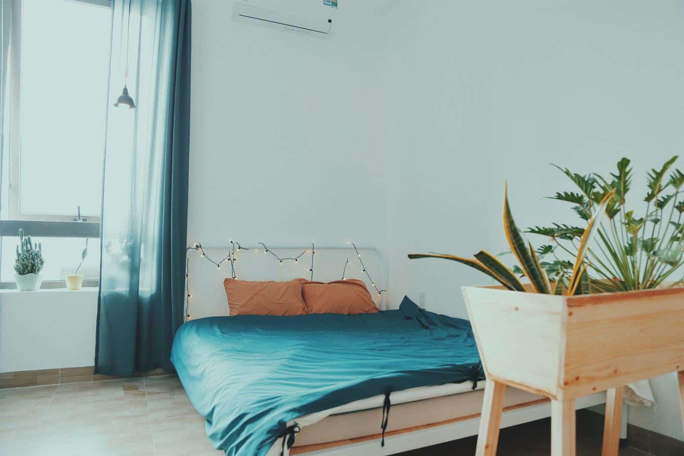 Top 10 Homestay Gần Biển, Giá Rẻ ở Nha Trang -  - Annie Homestay | Ccasa Hostel | Hẻm Xéo Homestay 59