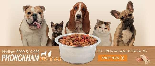 Top 10 Phòng Khám Bác Sĩ Thú Y Tốt Nhất HCM -  - AEC Pet Hospital Vietnam   Bệnh viện Pet-Pro   Family Vet 25