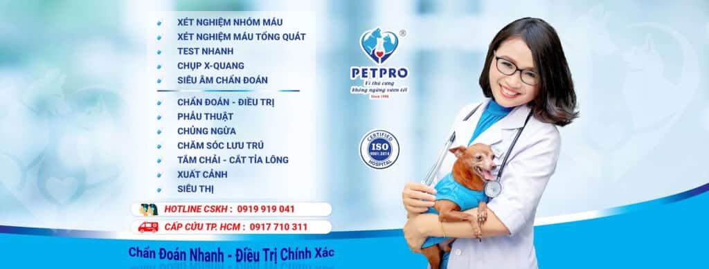 Top 10 Phòng Khám Bác Sĩ Thú Y Tốt Nhất HCM -  - AEC Pet Hospital Vietnam   Bệnh viện Pet-Pro   Family Vet 29