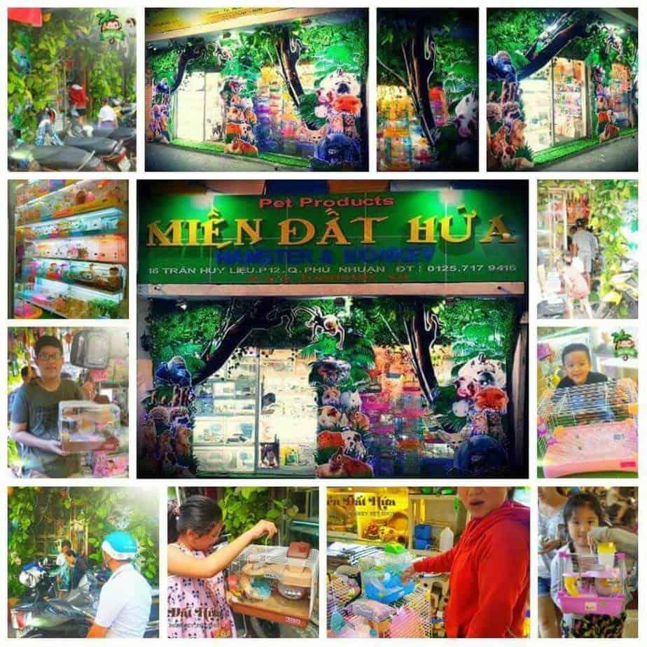 Top 10 Shop Bán Thú Cưng Tốt Nhất Ở Hồ Chí Minh -  - Bin Bon Dog Shop | Cindy Hamster Shop | Dogily Petshop 35