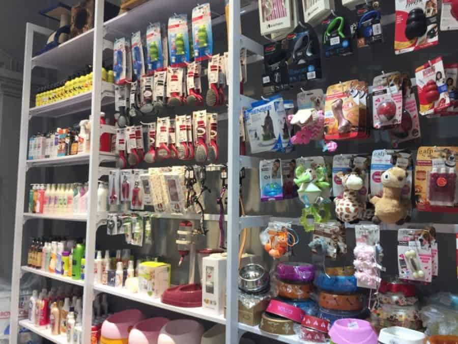 Top 10 Cửa Hàng Phụ Kiện Thú Cưng Giá Rẻ Nhất Hà Nội -  - Azpet Mart | Cửa hàng Vương Quốc Vật Nuôi | FamiPet 35